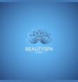 beauty spa logo vector image vector image