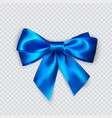 blue bow realistic silk bow decoration for gifts vector image