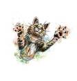 cat playing isolated on white background vector image