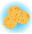 crackers isolated on white background vector image vector image