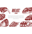 grilled meat poster pork or beef steak barbecue vector image