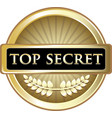 top secret icon vector image