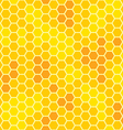 honeycomb with honey seamless pattern vector image
