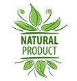 Abstract logo for natural product vector image vector image