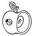 apple ladybird vector image vector image