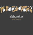 banner cocoa tree leaves fruit bean vector image