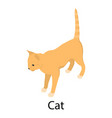 cat icon isometric style vector image