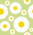 Chamomile flowers seamless vector image