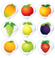 set of isolated stickers with fresh fruits vector image