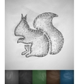 squirrel icon vector image vector image