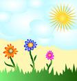 Solar flower card vector image