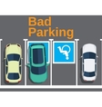 Bad parking car parked for disabled vector image vector image