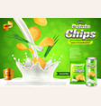 chips ads onions in pouring sour cream background vector image vector image