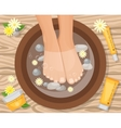 Feets In Basin Composition vector image vector image