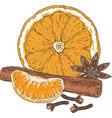 orange slice tangerine spices vector image vector image