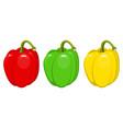 pepper design vector image vector image