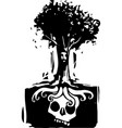 skull tree roots vector image