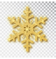 snowflake made golden glitter isolated on white vector image vector image