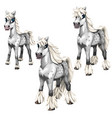 stages of growing gray horse with a white mane vector image vector image