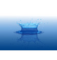 water splash with reflection effect water crown vector image
