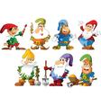 Funny Gnomes vector image