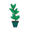 plant in vase ornament vector image vector image
