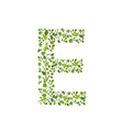 Spring green leaves eco letter E vector image vector image