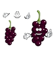 Cartoon currant berries vector image vector image