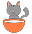 kitty drinking milk on white background vector image vector image