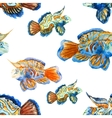 Nice fishes vector image vector image