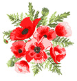 poppies floral bouquet vector image vector image