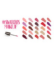 swatches makeup set vector image