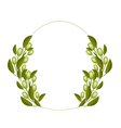 A Fresh Olive Wreaths on White Background vector image