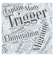 Migraine Trigger Elimination Dieting Word Cloud vector image vector image