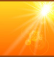 summer orange background with sunlight vector image vector image