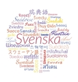 Swedish collage vector image