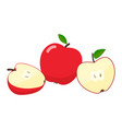 apples cartoon vector image