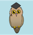 a wise owl vector image vector image
