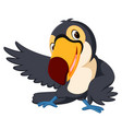 cartoon bird toucan good posing vector image vector image