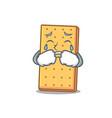 crying graham cookies mascot cartoon vector image
