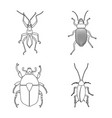 design of insect and fly icon collection vector image vector image