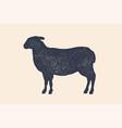 lamb sheep vintage logo retro print poster vector image
