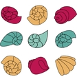 Set of colorful shell on white background vector image vector image