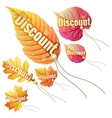 Set with autumn sale tags EPS 10 vector image