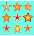 starfish a set nine options vector image vector image