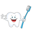 Cartoon Tooth Character vector image