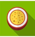 Passionfruit flat icon vector image