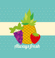 always fresh nature nutrition fruits pineapple vector image vector image