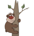Bear on a tree vector image vector image