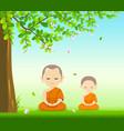 thai monks and thai novice buddhism meditation vector image
